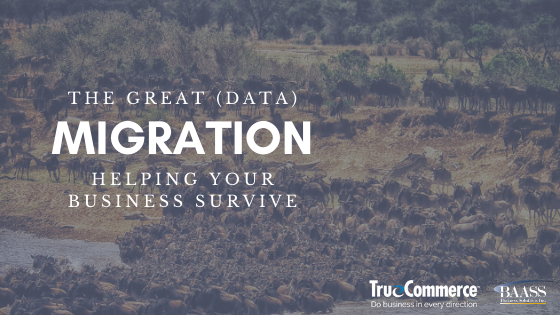The Great (Data) Migration: Helping Your Business Survive